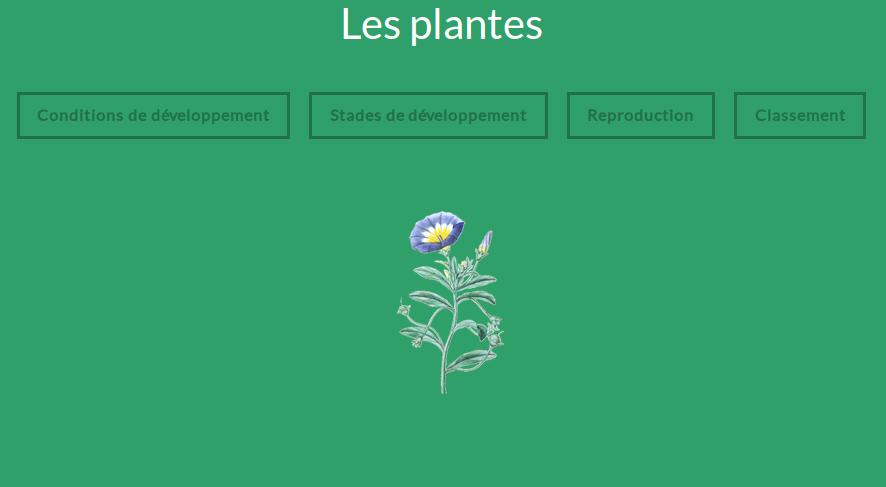 cours-numerique-plantes